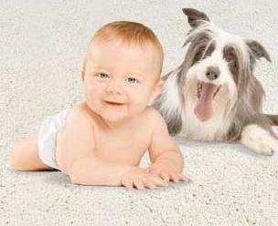 натуральные способы чистки ковровых покрытий