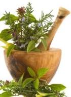Лекарственные  растения, что необходимо знать