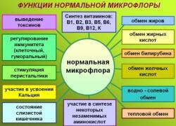 микрофлора